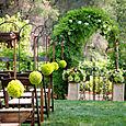 Lime Kermit Aisle