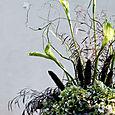 Fall twig altar arrangment