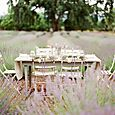 Bridal table at Sonoma Lavender