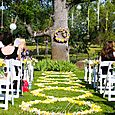 Outdoor wedding at Youngs Vineyard Plymouth California