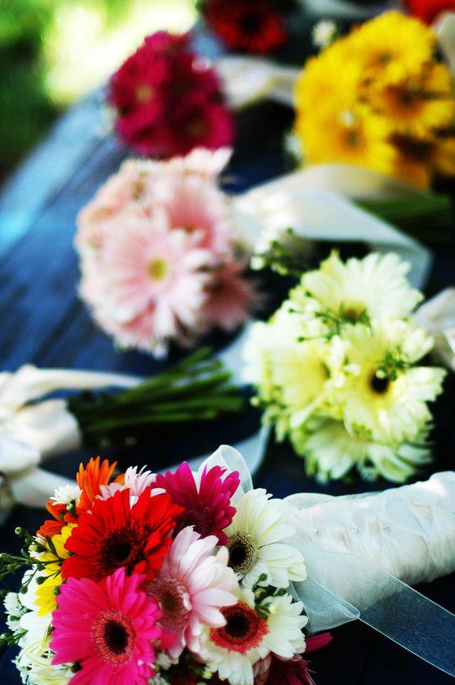 Bridal Bouquet Of Gerbera Daisies : Bridal flowers gerbera daisy bouquets