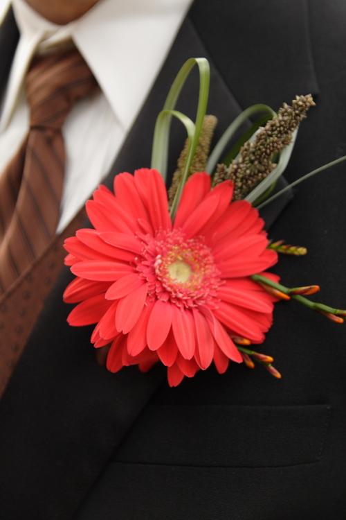 red-gerbera-daisy-boutonniere