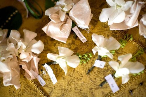 White orchid corsage with silk ribbon